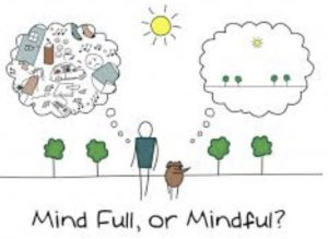 mindful_dog